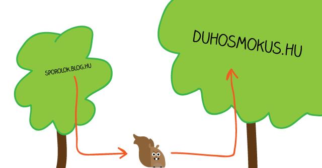 mókus költözik