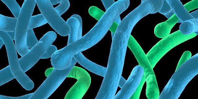 fertőzések intim területeken és amit tehetünk ellene