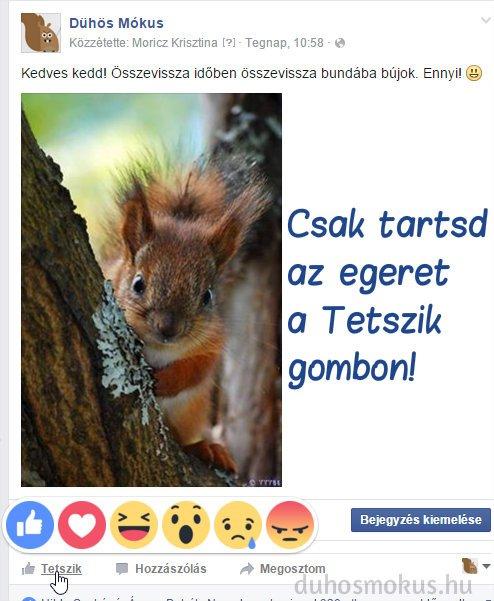 facebook lájkolás