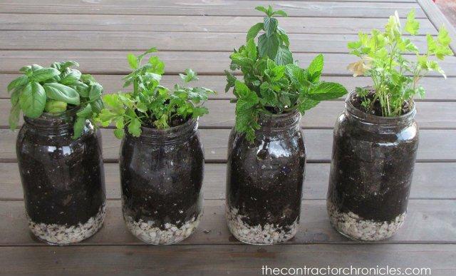 befőttesüvegben fűszernövények