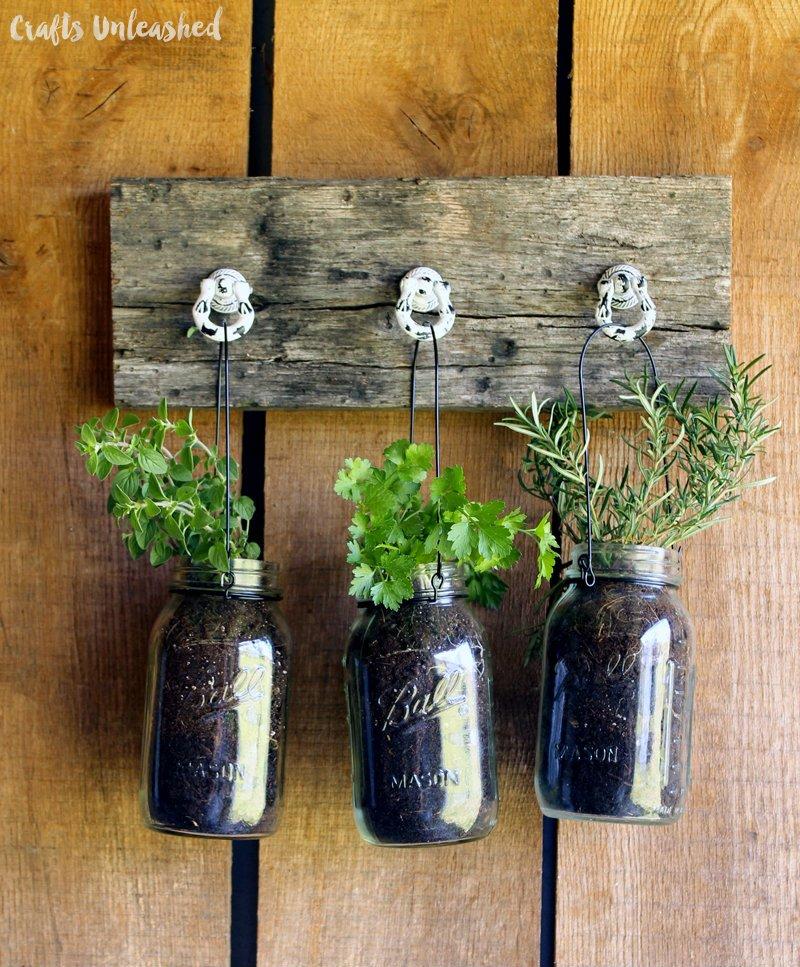 fűszernövények ültetése befőttesüvegekbe