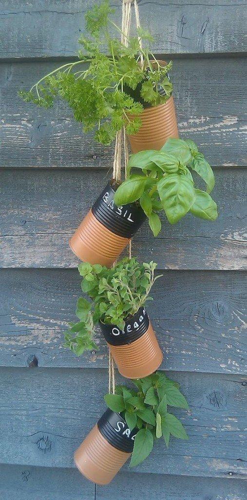 konzervdobozban lógatott fűszernövények