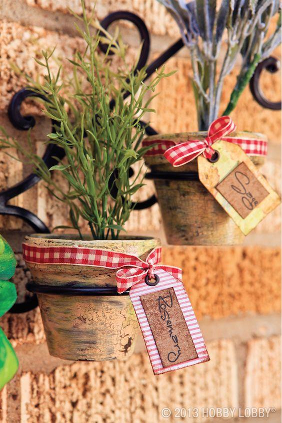 fűszernövény cserépben, felcímkézve